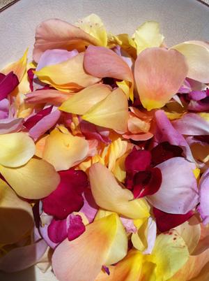 Making rose petal jam